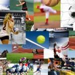Scommesse sportive, nei primi 9 mesi mercato in crescita dell'8%. Boom dell'online che viaggia a velocità tripla rispetto al gioco in agenzia