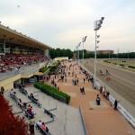 Ippica: all'Arcoveggio un giovedì ricco di corse interessanti