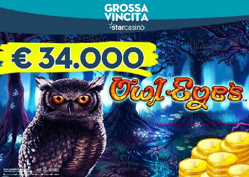 casino owl